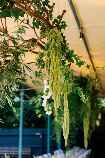 Hanging-III.jpeg
