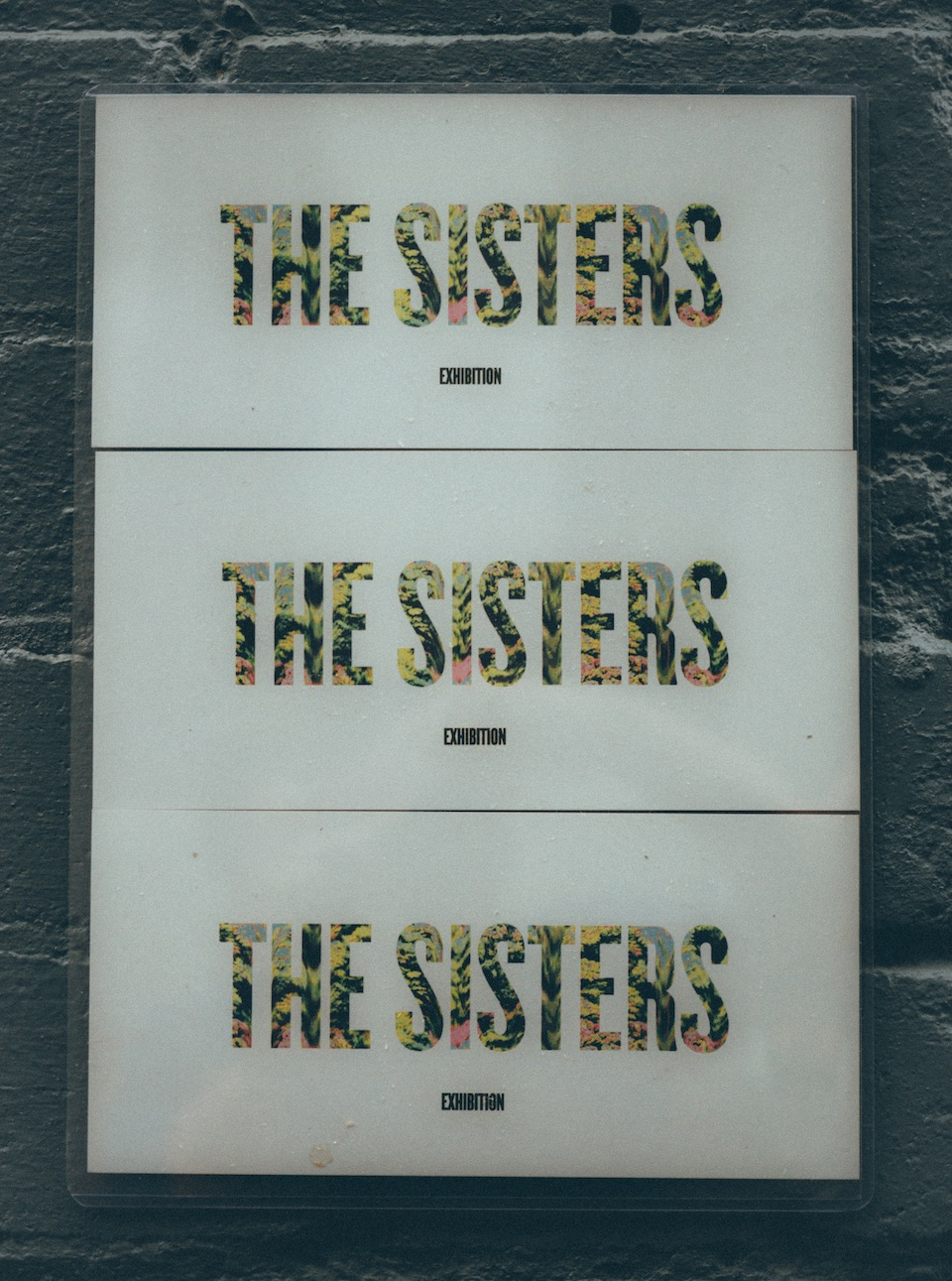 20151024_thesisters-7.jpeg
