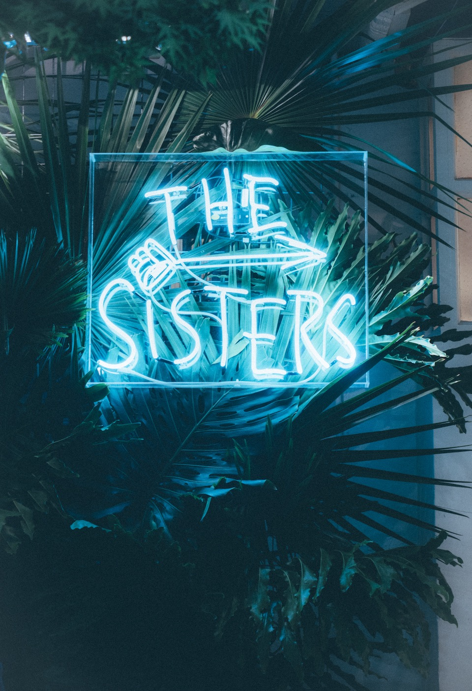 20151024_thesisters-14.jpeg